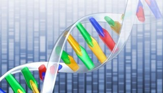 mappa-genoma.jpg